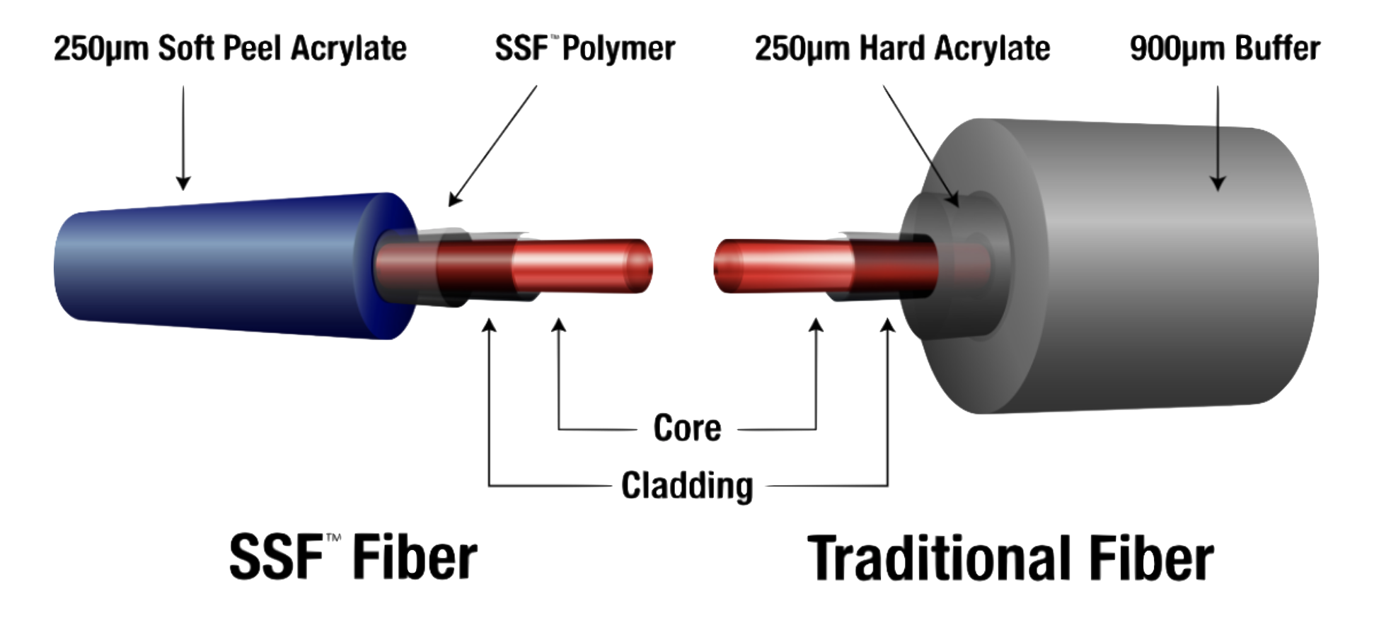 The Basic Elements of Fiber - Module Two